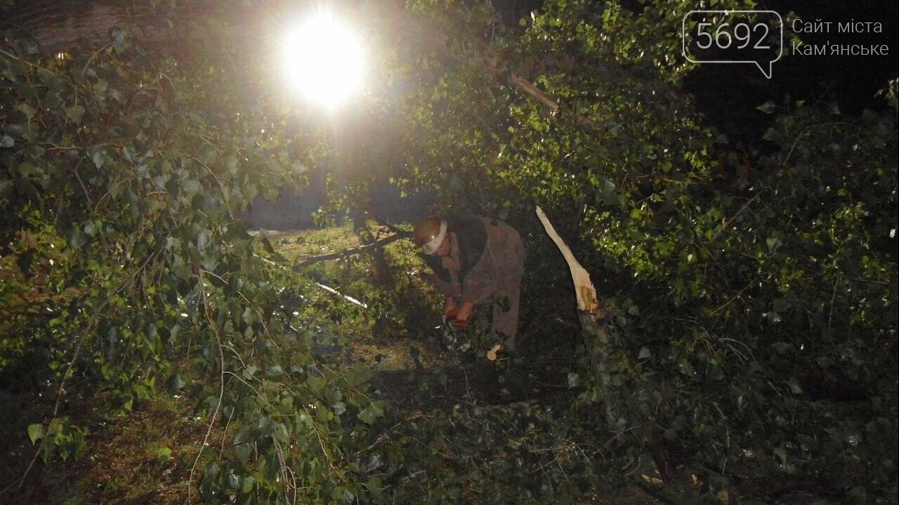 Спасатели Каменского ликвидируют последствия стихии, фото-5