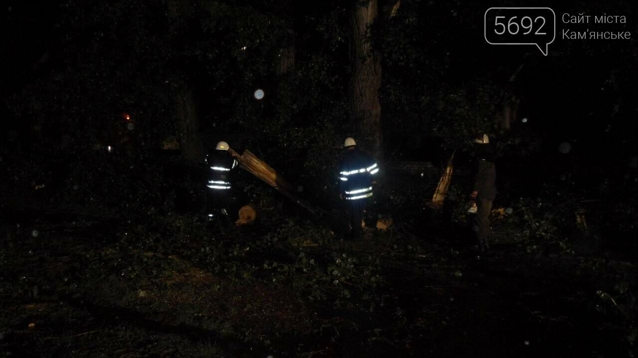 Спасатели Каменского ликвидируют последствия стихии, фото-3