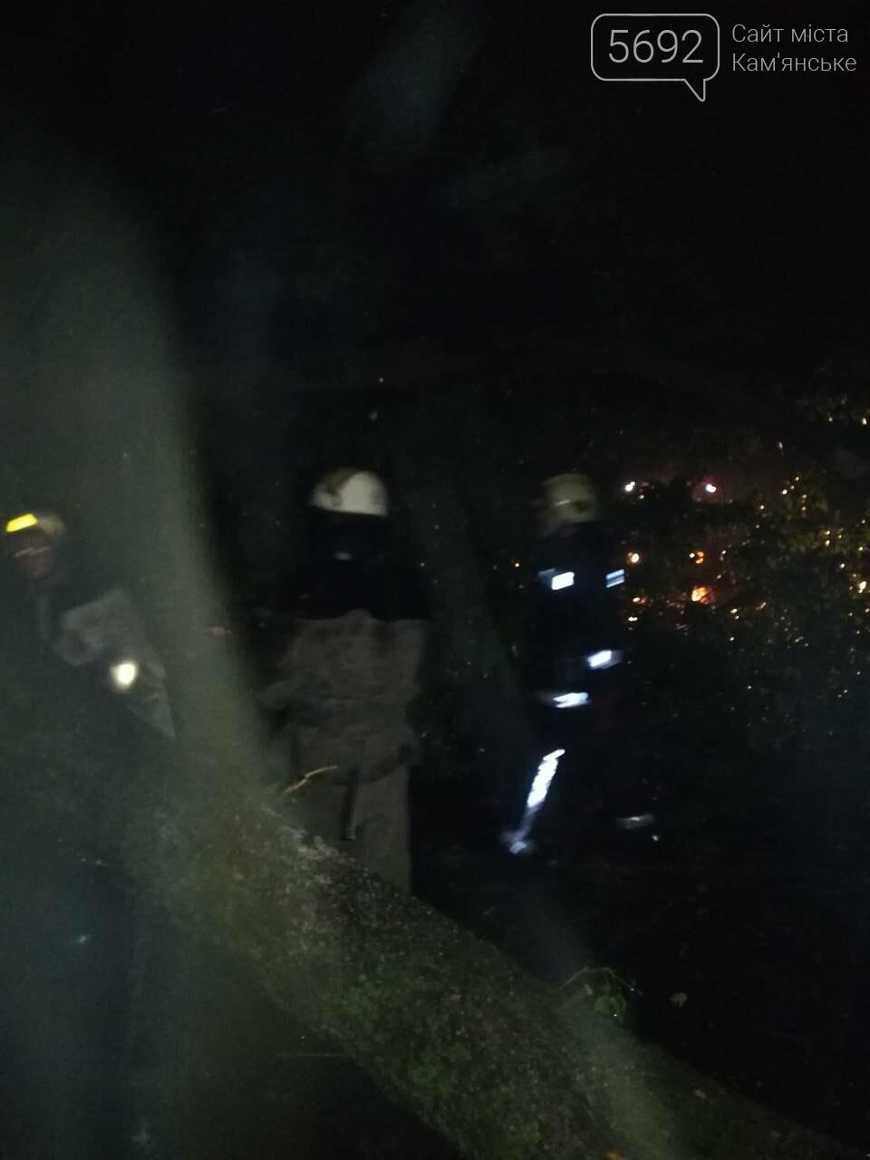 Спасатели Каменского ликвидируют последствия стихии, фото-2