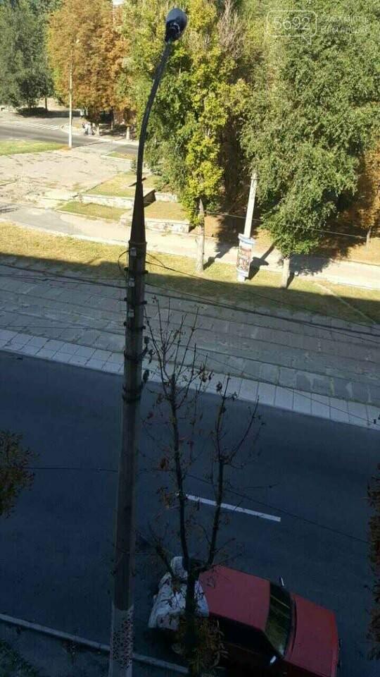 Припарковался: в Каменском на обочине сгорел автомобиль , фото-1