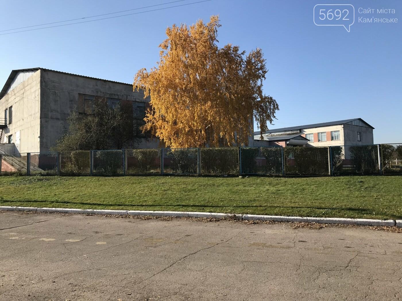 Что получит Каменское в случае присоединения: репортаж из Степового, фото-36