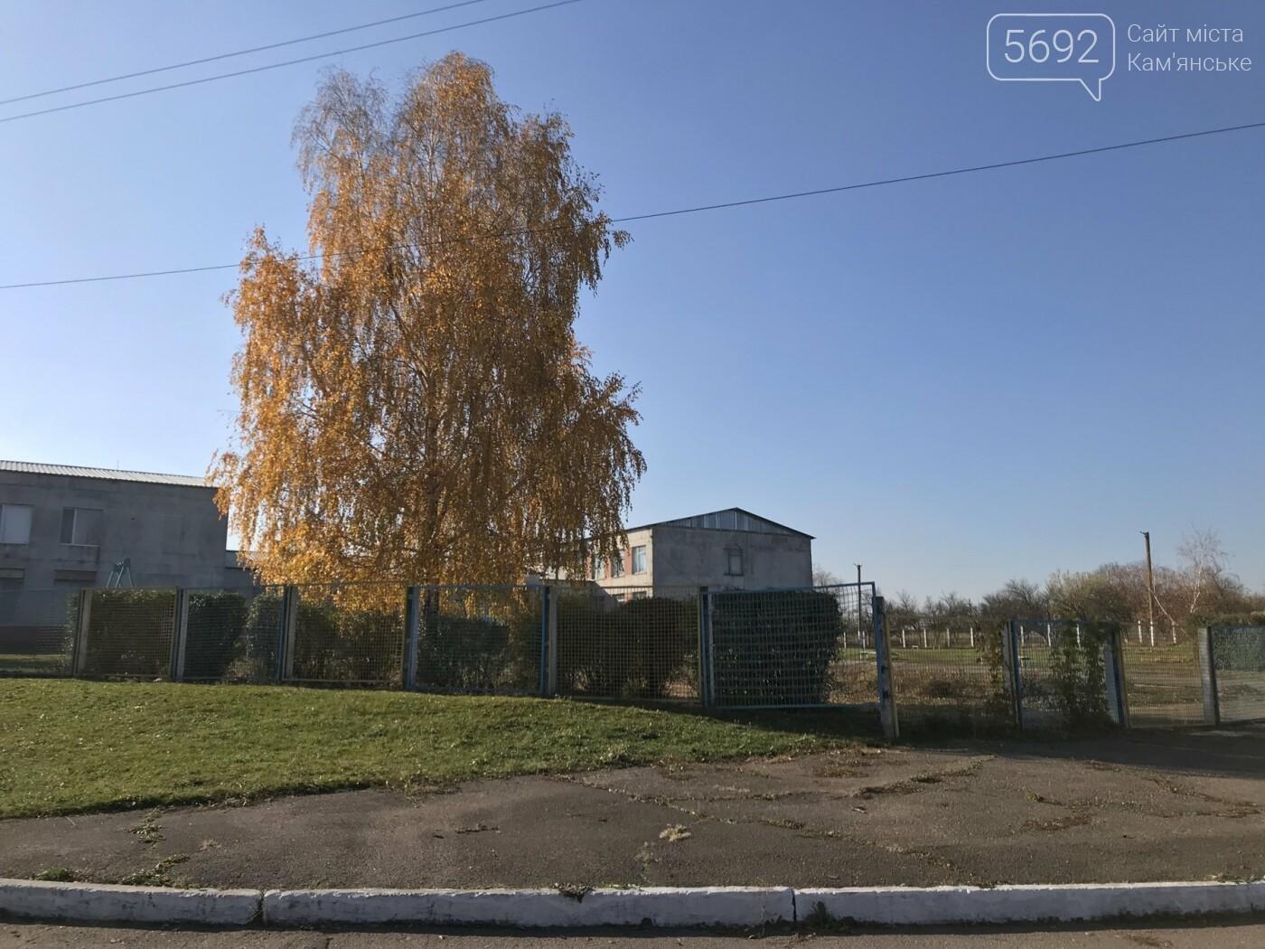 Что получит Каменское в случае присоединения: репортаж из Степового, фото-13