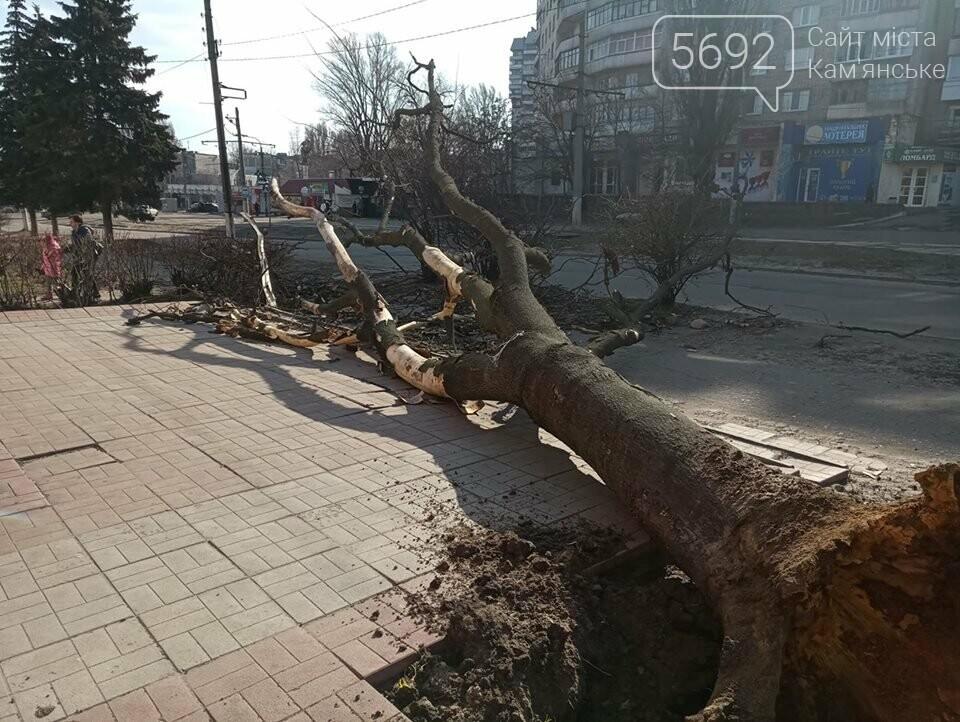 Штормовое предупреждение: шквальный ветер в Каменском валит деревья, фото-1