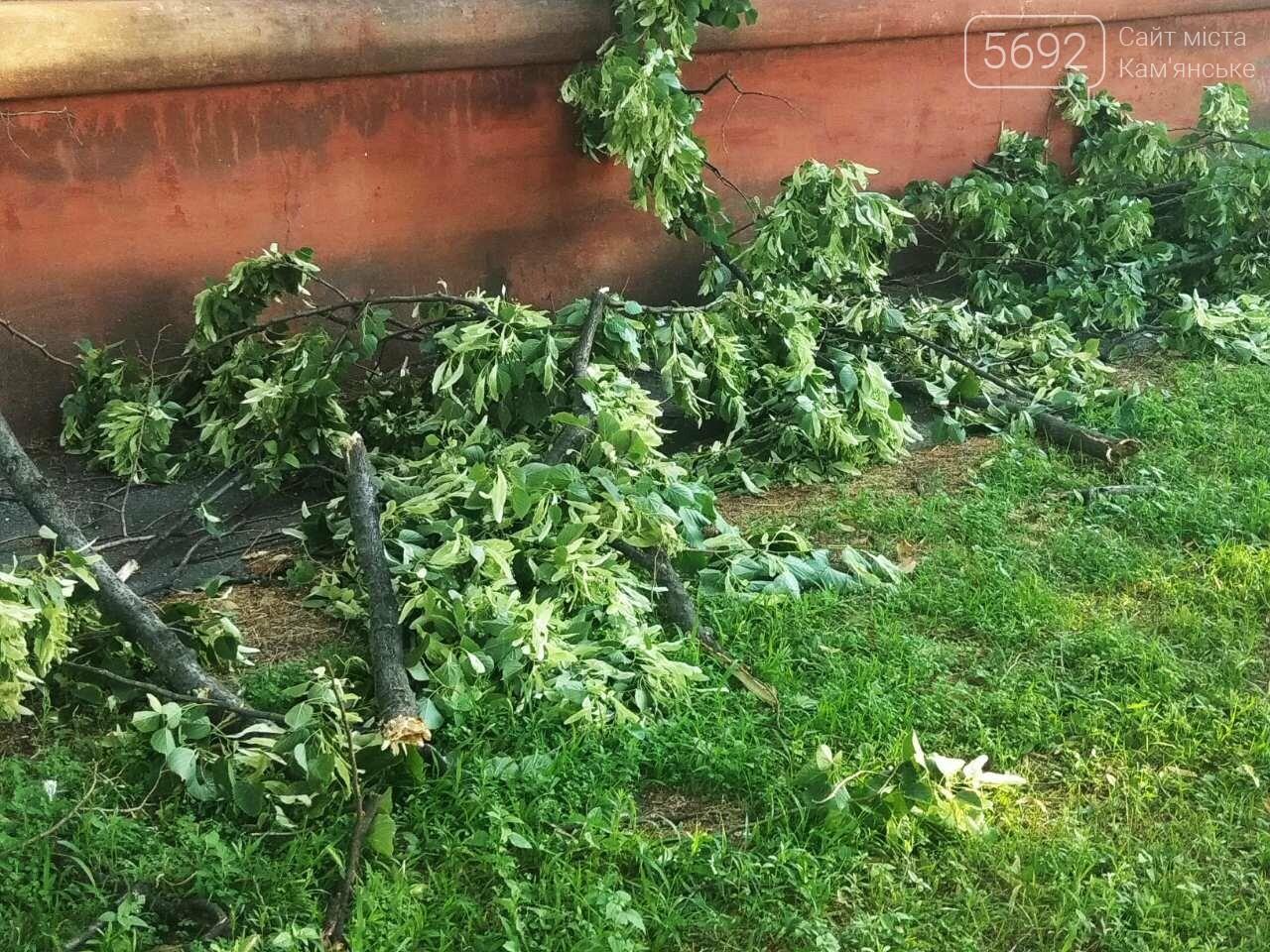 В Каменском огромное дерево упало на окна жилого дома , фото-7