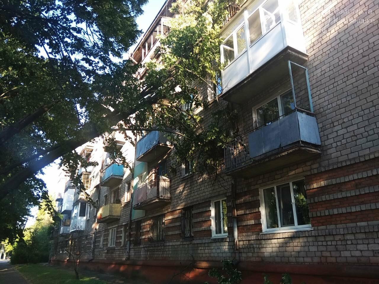 В Каменском огромное дерево упало на окна жилого дома , фото-3