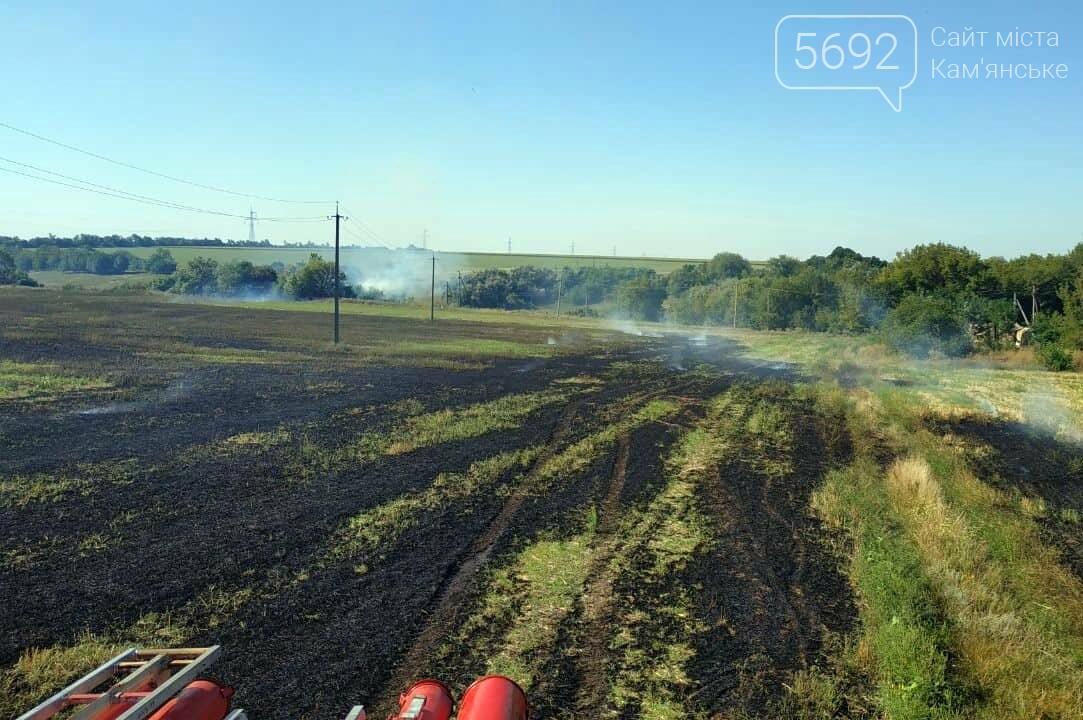 Горит экосистема: за сутки на Днепропетровщине произошло 30 пожаров, фото-1