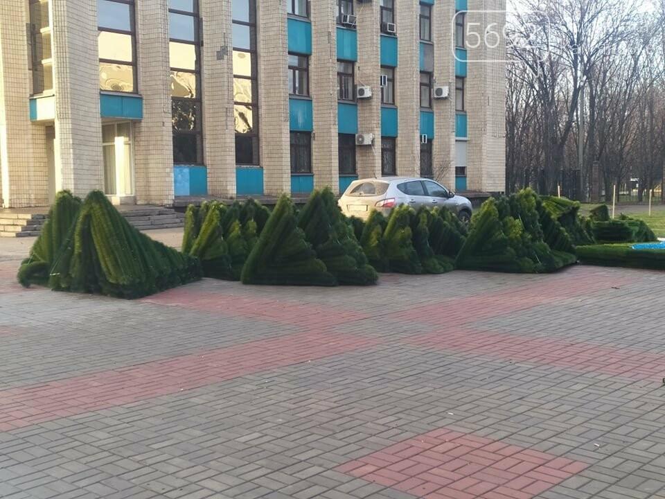 В Каменском устанавливают новогоднюю елку, фото-6