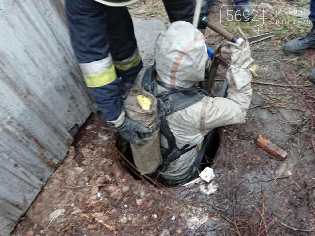 В Днепре спасатели достали из ямы щенков, фото-3