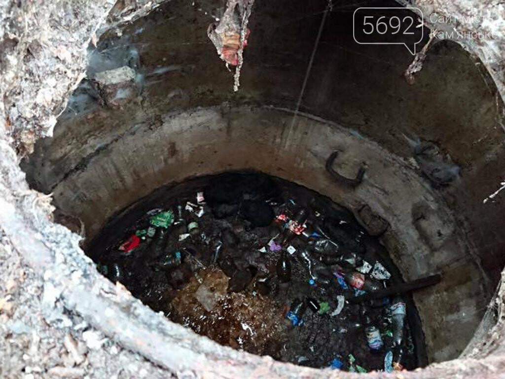 В Днепре спасатели достали из ямы щенков, фото-2