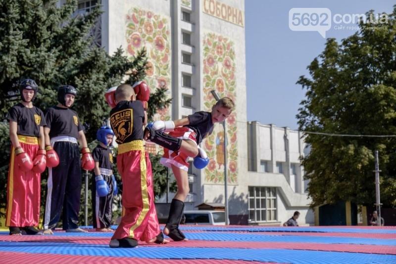 В Каменском прошел фестиваль единоборств, фото-3