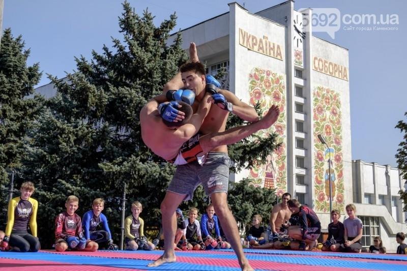 В Каменском прошел фестиваль единоборств, фото-5