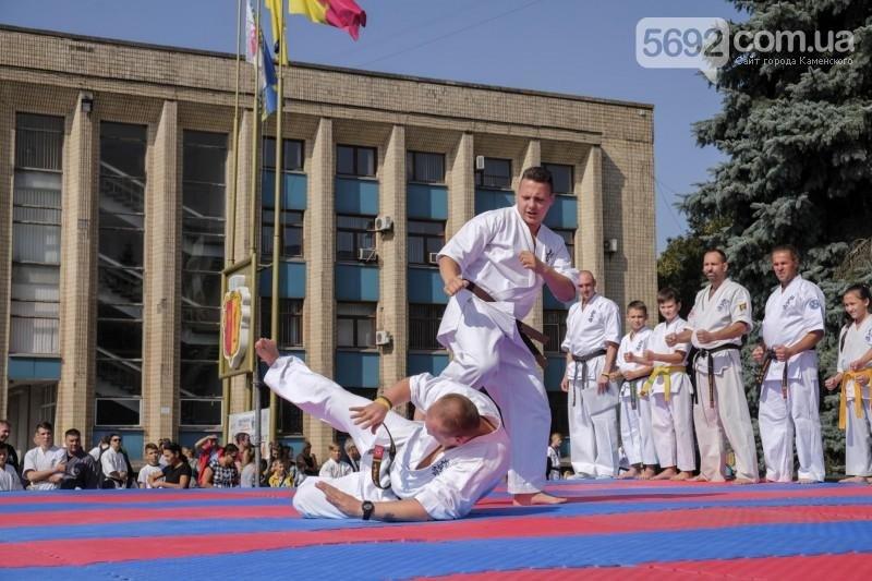 В Каменском прошел фестиваль единоборств, фото-8