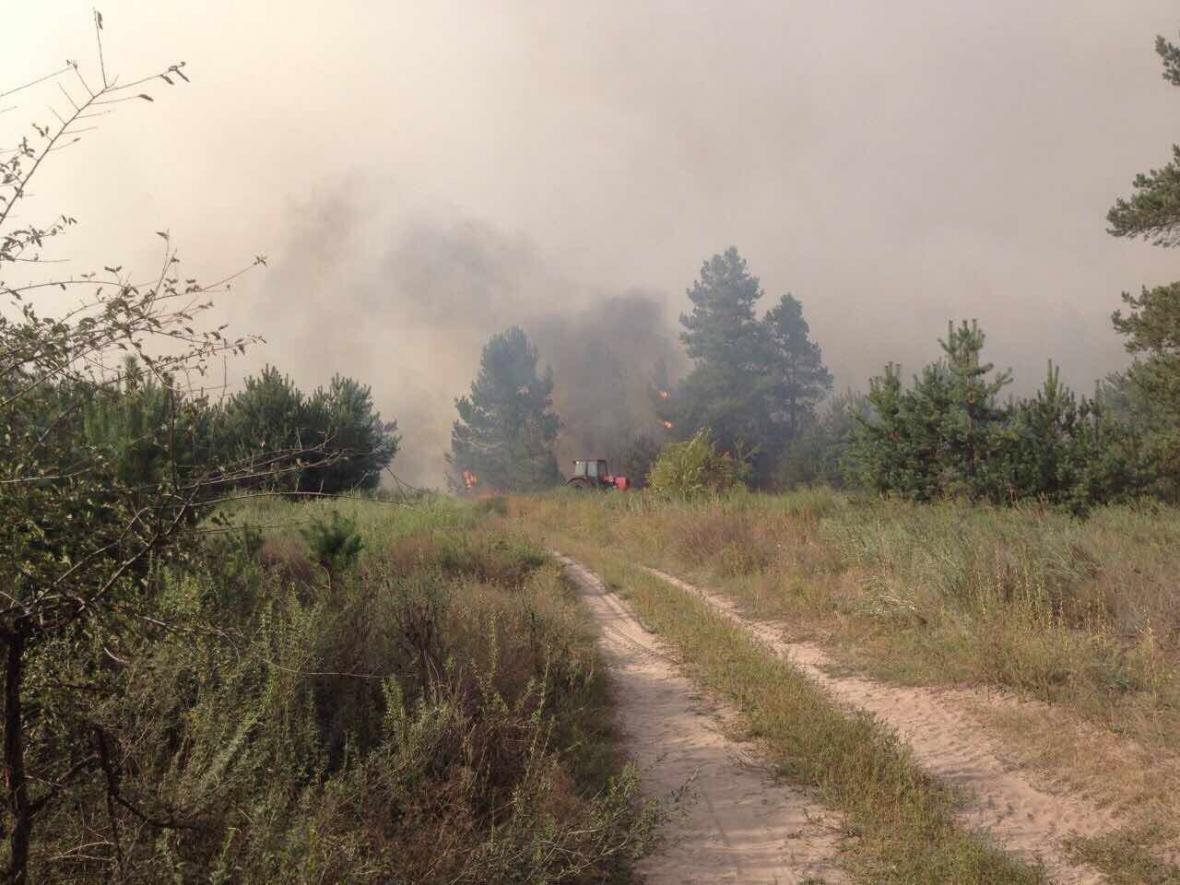 Лесной пожар вблизи Каменского локализовали , фото-4