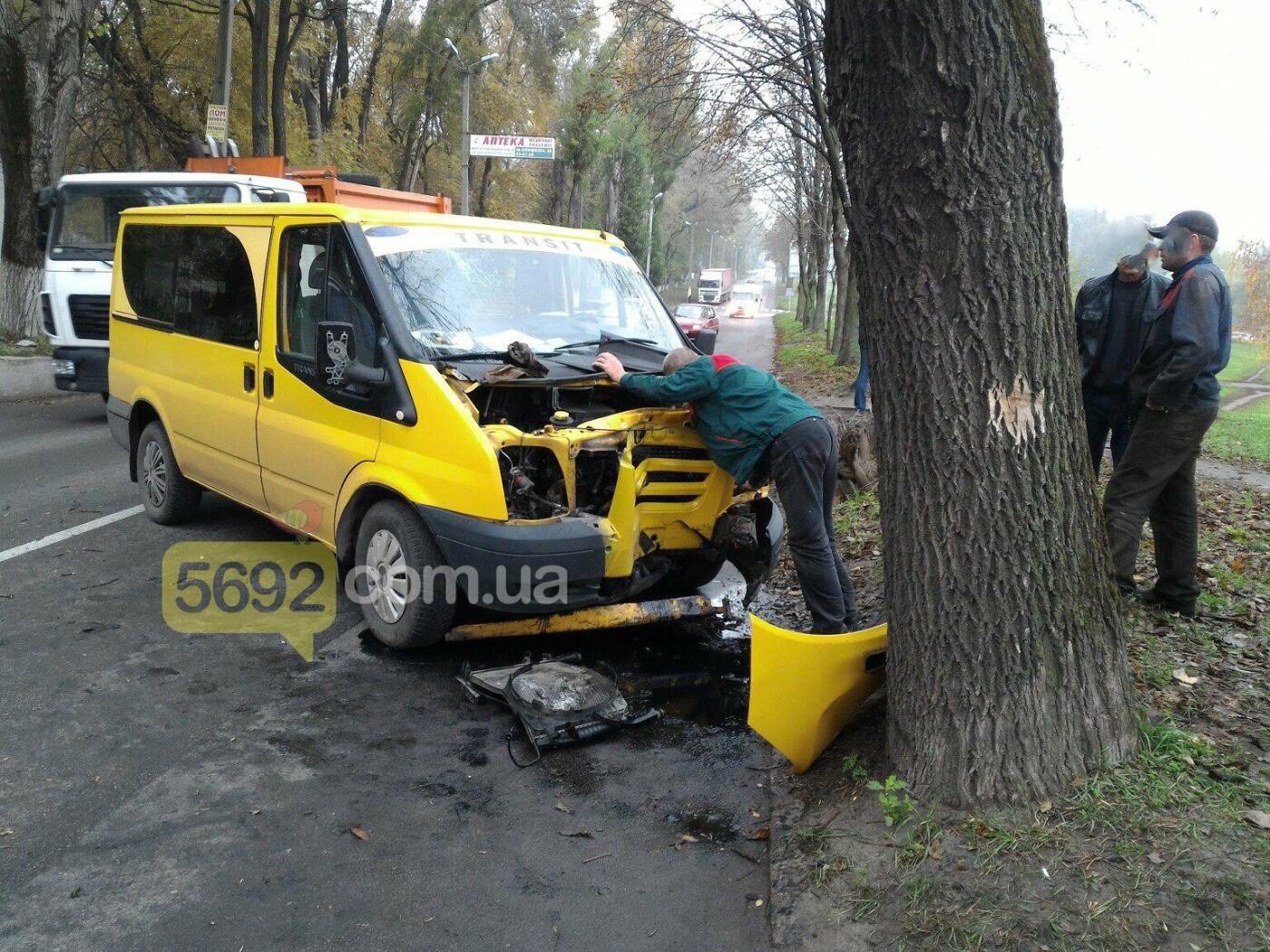 ДТП в Каменском: Ford Transit врезался в дерево, фото-5