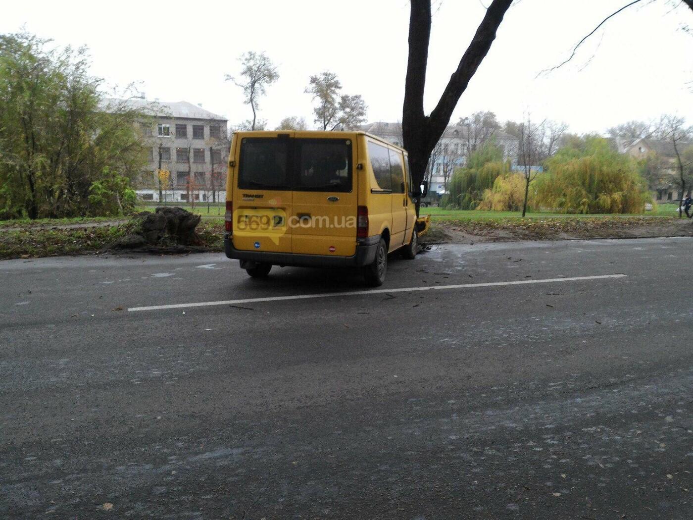 ДТП в Каменском: Ford Transit врезался в дерево, фото-2