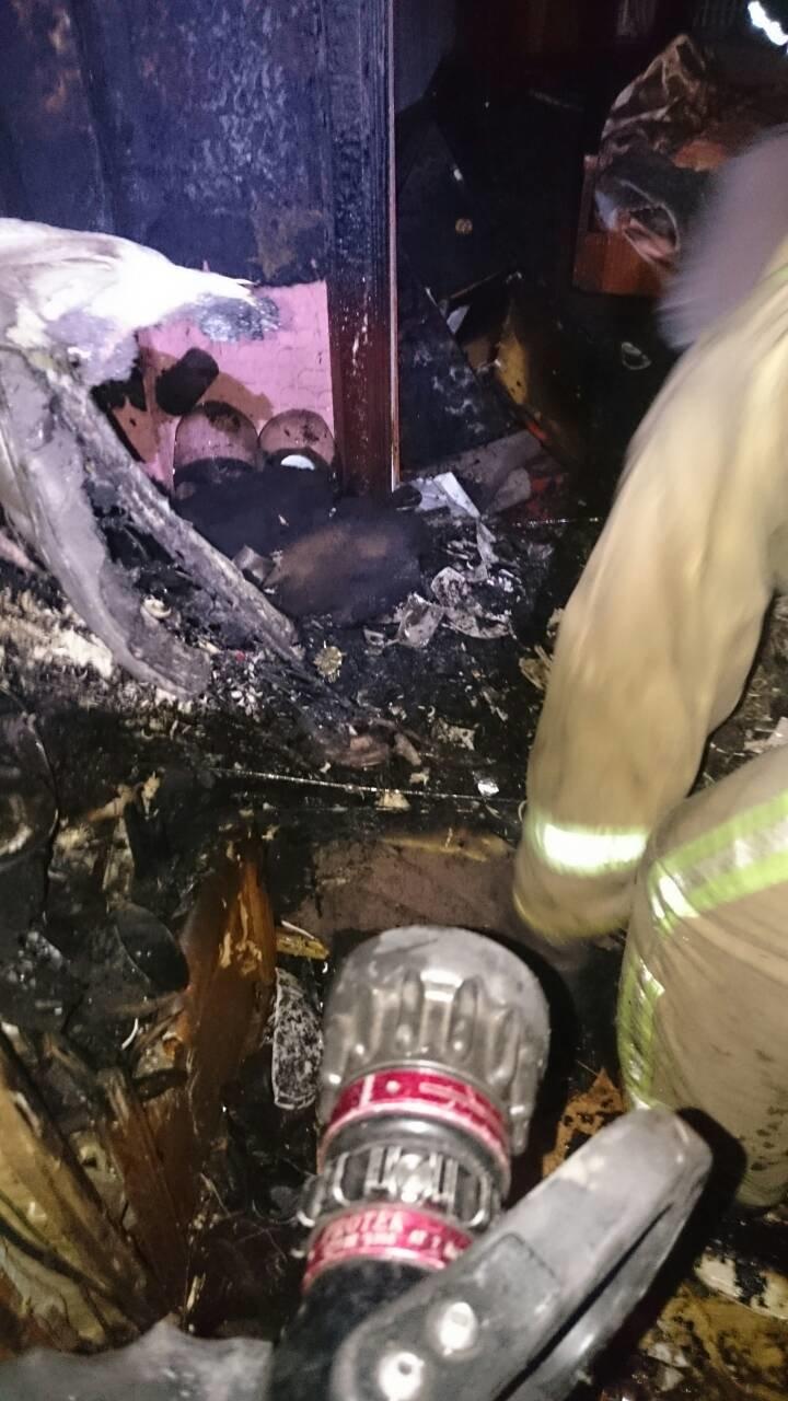 Во время пожара на левобережье Каменского погиб мужчина, фото-3