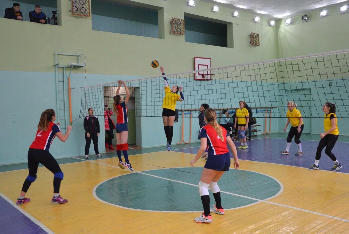 В Каменском соревновались волейболисты, фото-3