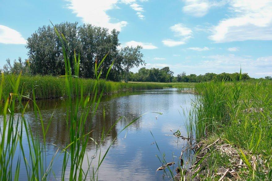 Завершается восстановление одной из рек вблизи Каменского, фото-1