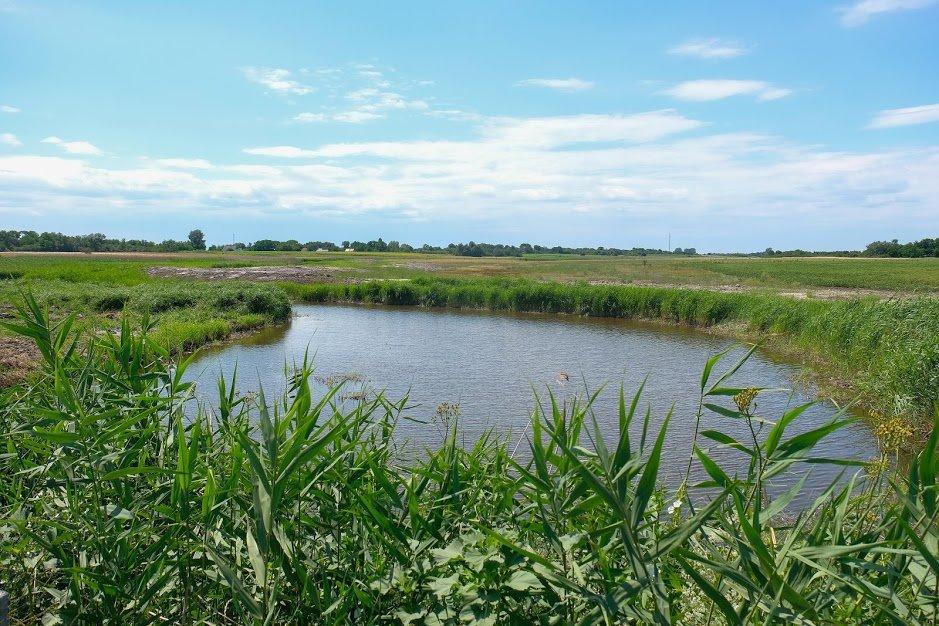 Завершается восстановление одной из рек вблизи Каменского, фото-3