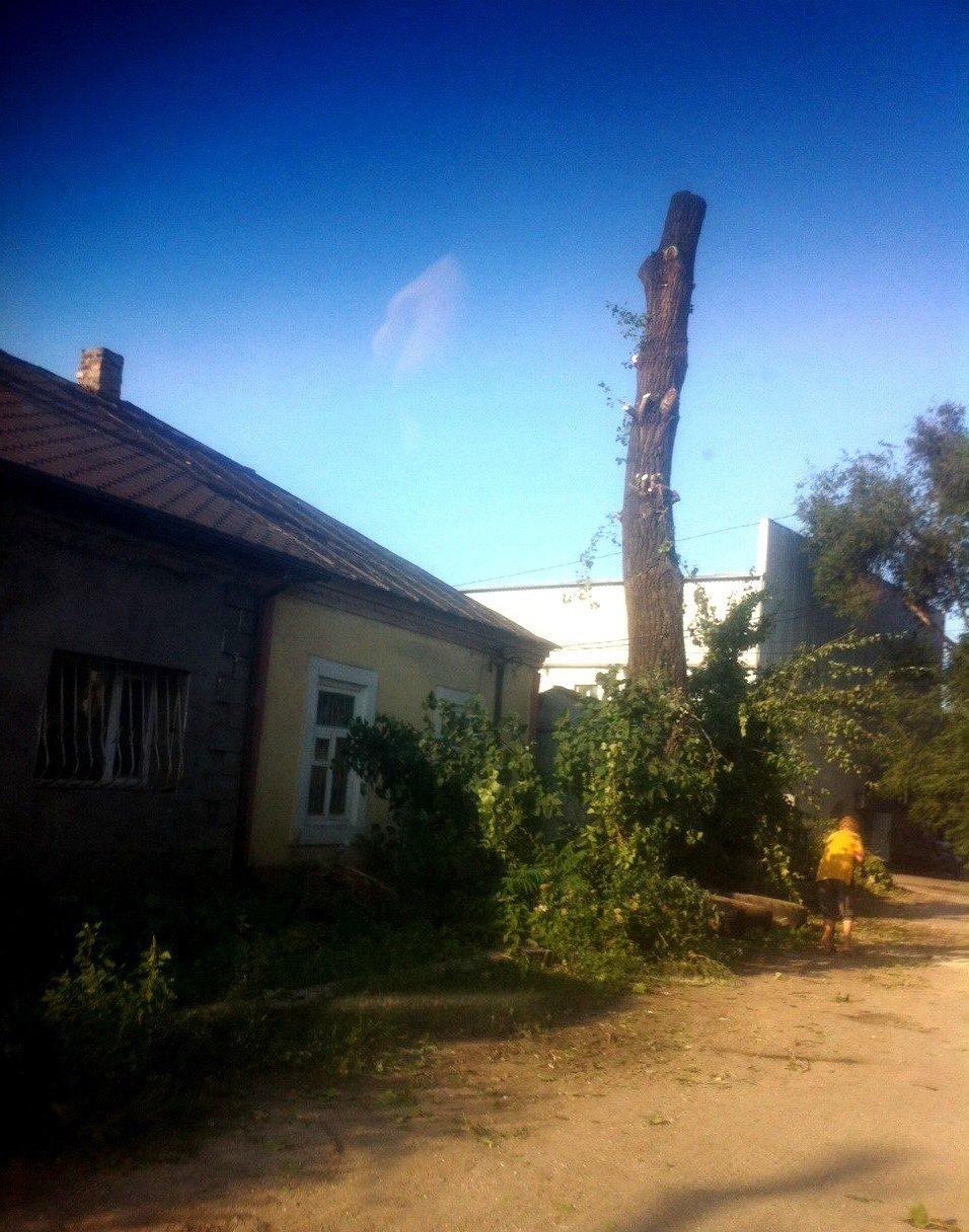 В Заводском районе Каменского завершили ликвидацию последствий непогоды, фото-3
