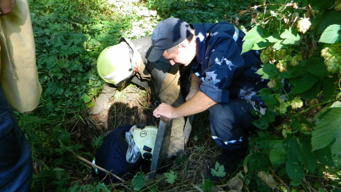 В Каменском спасатели достали из колодца щенка, фото-2