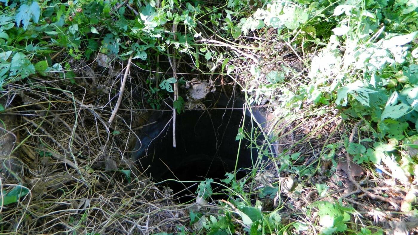 В Каменском спасатели достали из колодца щенка, фото-3