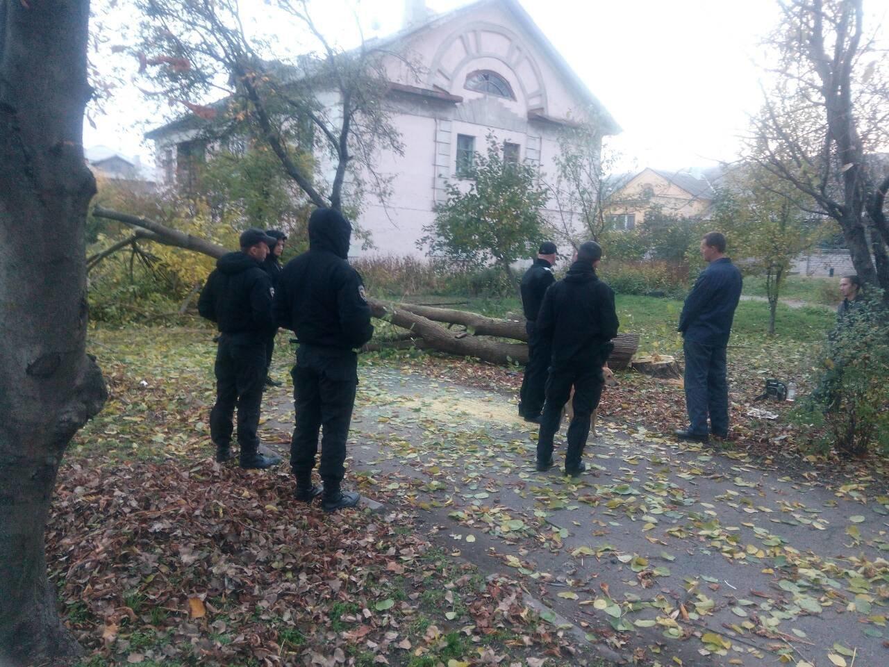 Незаконная вырубка деревьев: работники каменской «Муниципальной гвардии» задержали подозреваемых, фото-1