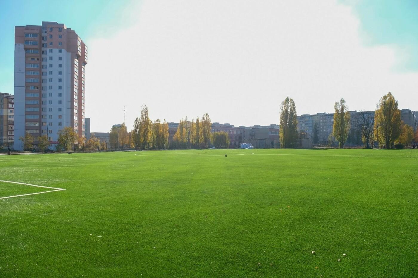 На левом берегу Каменского завершают строительство стадиона  , фото-4