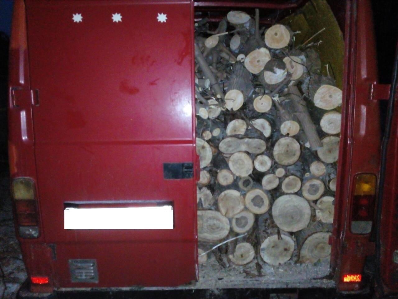 Запасались дровами: каменские гвардейцы пресекли незаконную вырубку деревьев, фото-2