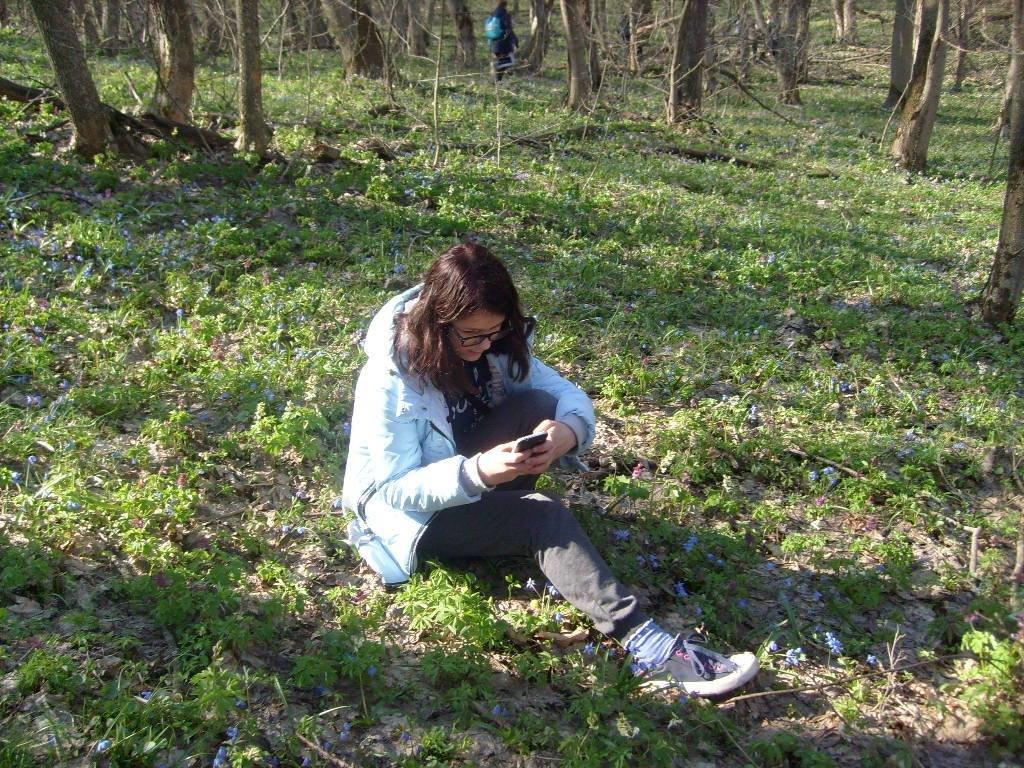 «Варварски вырублены деревья»: каменские экологи бьют тревогу, фото-10