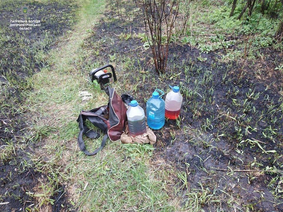Полицейские пресекли незаконную вырубку леса в Каменском, фото-6