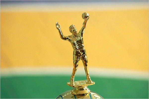 В Каменском прошел волейбольный турнир «Днепровские звезды», фото-5