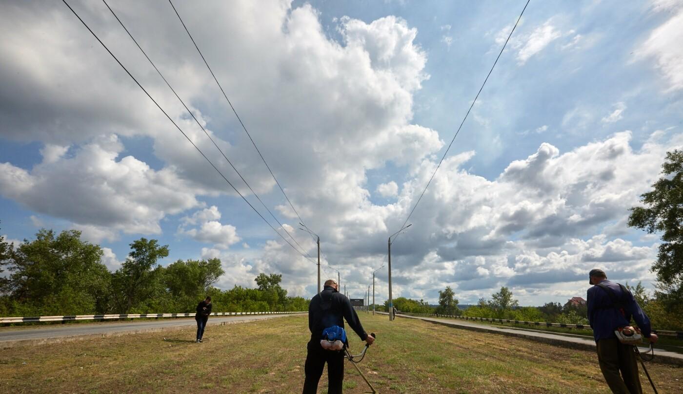 В Каменском начался сезон покоса травы, фото-1