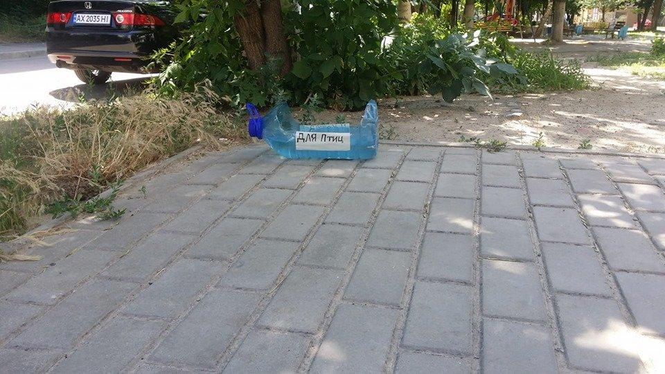 Каменчан просят помогать животным бороться с жаждой, фото-1