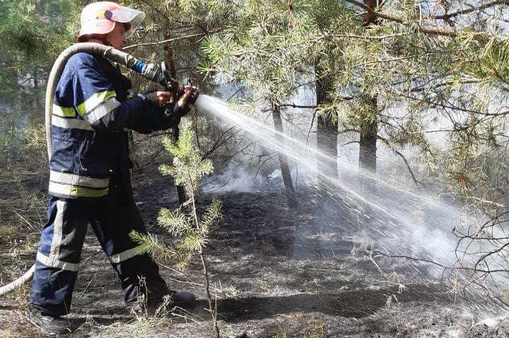 Горит экосистема: на Днепропетровщине за сутки возникло 26 пожаров, фото-1