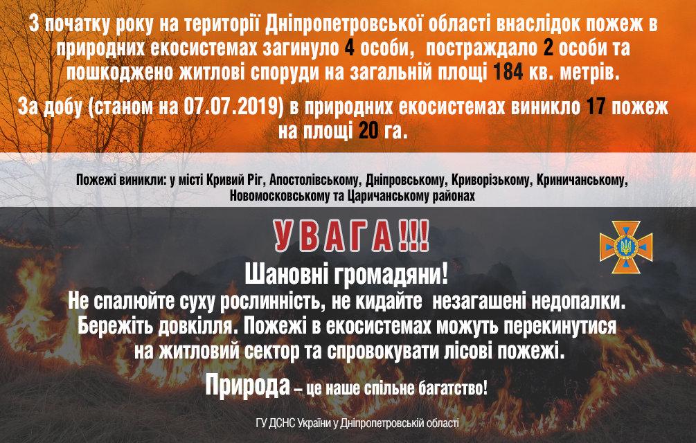 Горит экосистема: на Днепропетровщине за сутки произошло 17 пожаров, фото-1