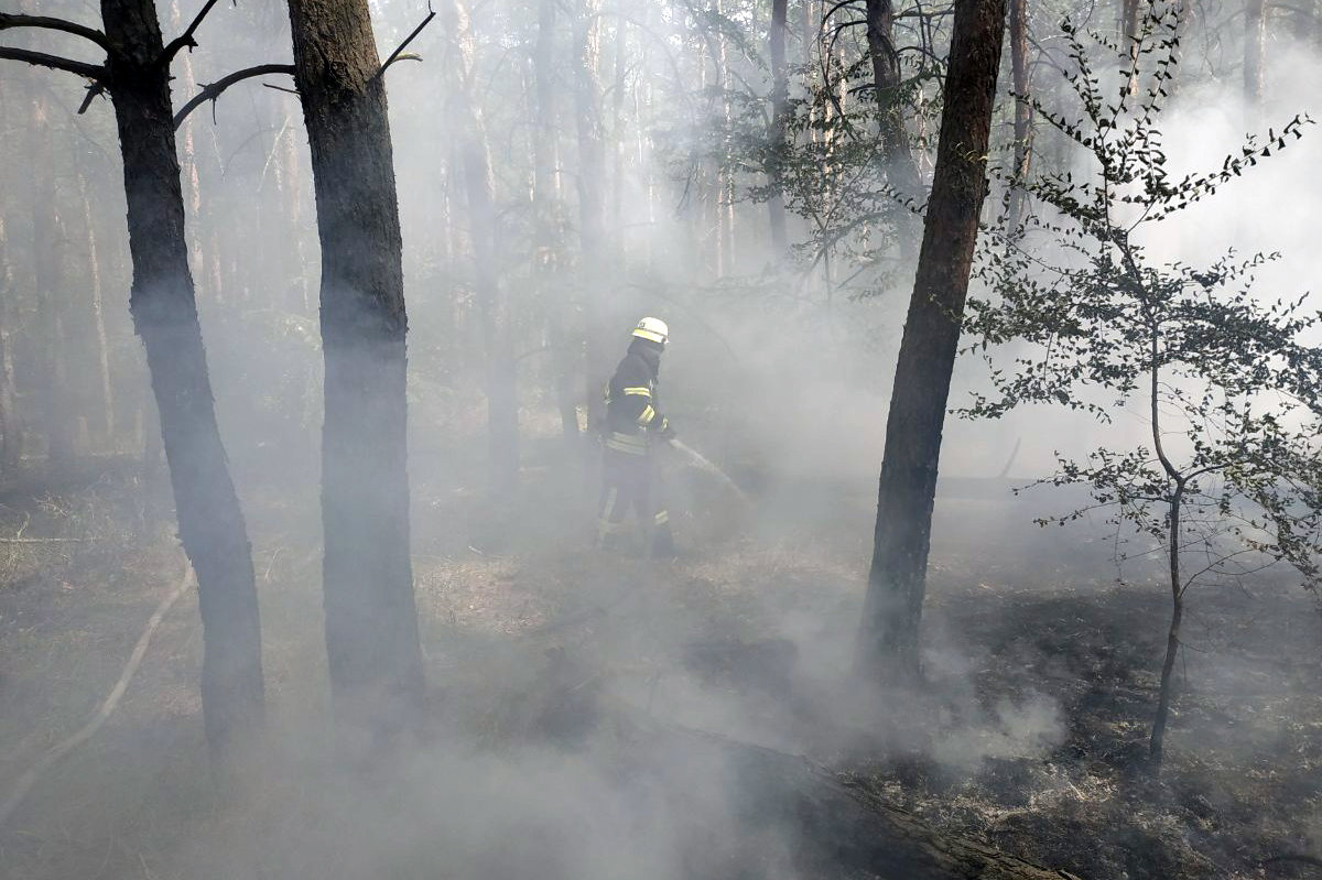 За прошедшие сутки на Днепропетровщине спасатели потушили 16 пожаров, фото-7