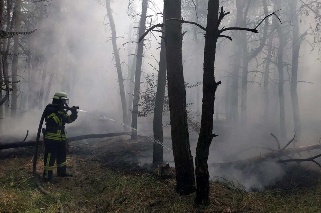 За прошедшие сутки на Днепропетровщине спасатели потушили 16 пожаров, фото-6