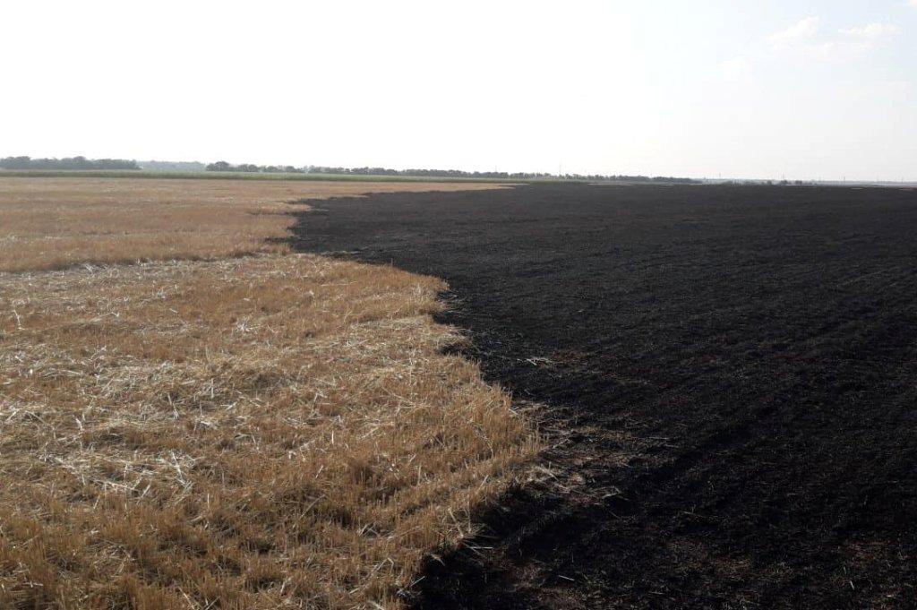 За прошедшие сутки на Днепропетровщине спасатели потушили 16 пожаров, фото-2