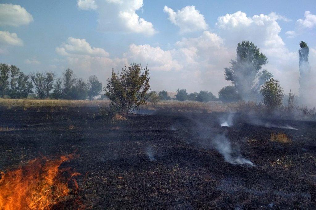 За прошедшие сутки на Днепропетровщине спасатели потушили 16 пожаров, фото-8