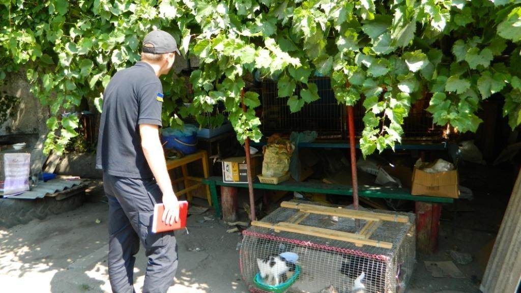 Как спасатели Каменского помогают животным, фото-6