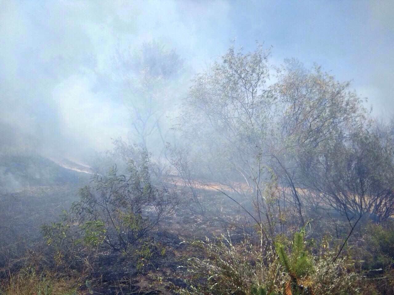 За прошедшие сутки на Днепропетровщине спасатели потушили 28 пожаров, фото-1