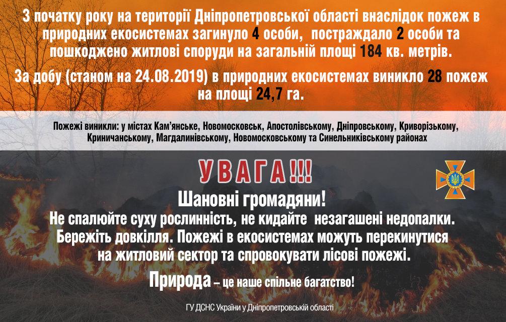 За прошедшие сутки на Днепропетровщине спасатели потушили 28 пожаров, фото-2