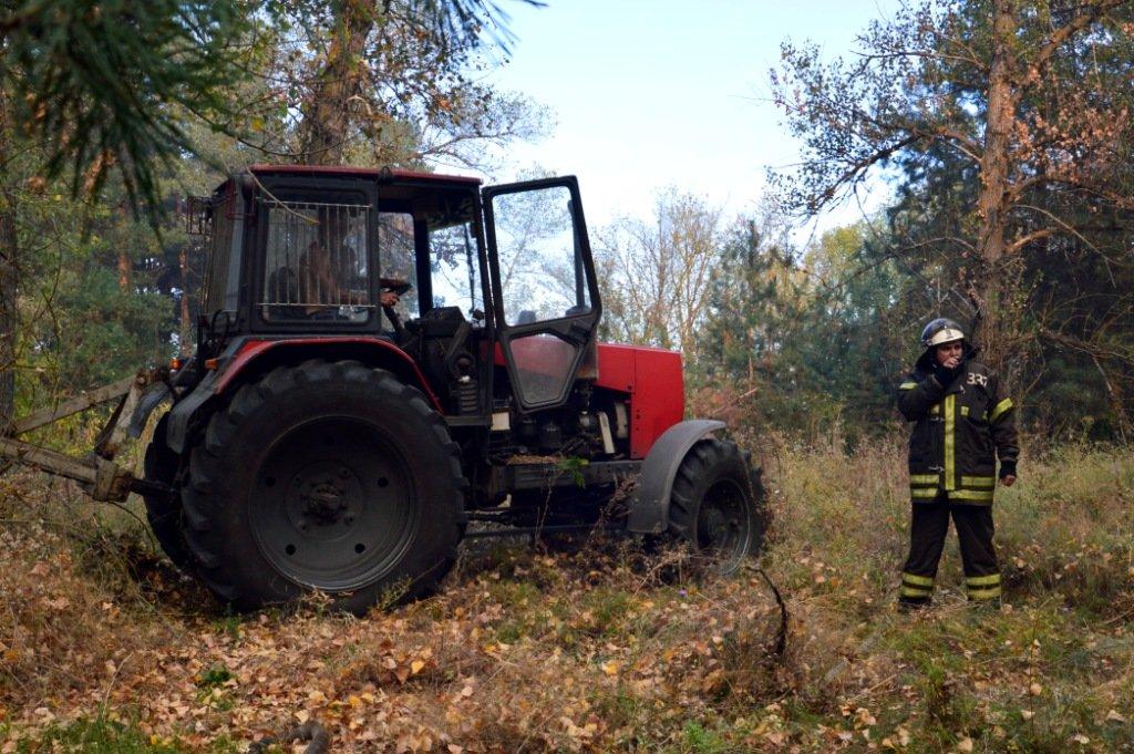 Под Каменским горел лес: выгорело 12 гектаров экосистемы, фото-10