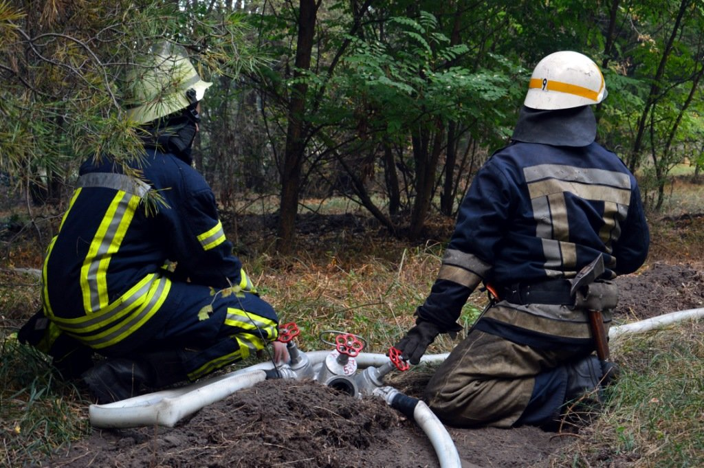 Под Каменским горел лес: выгорело 12 гектаров экосистемы, фото-6