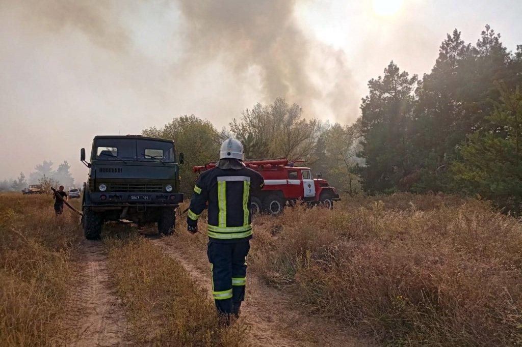 Под Каменским горел лес: выгорело 12 гектаров экосистемы, фото-11