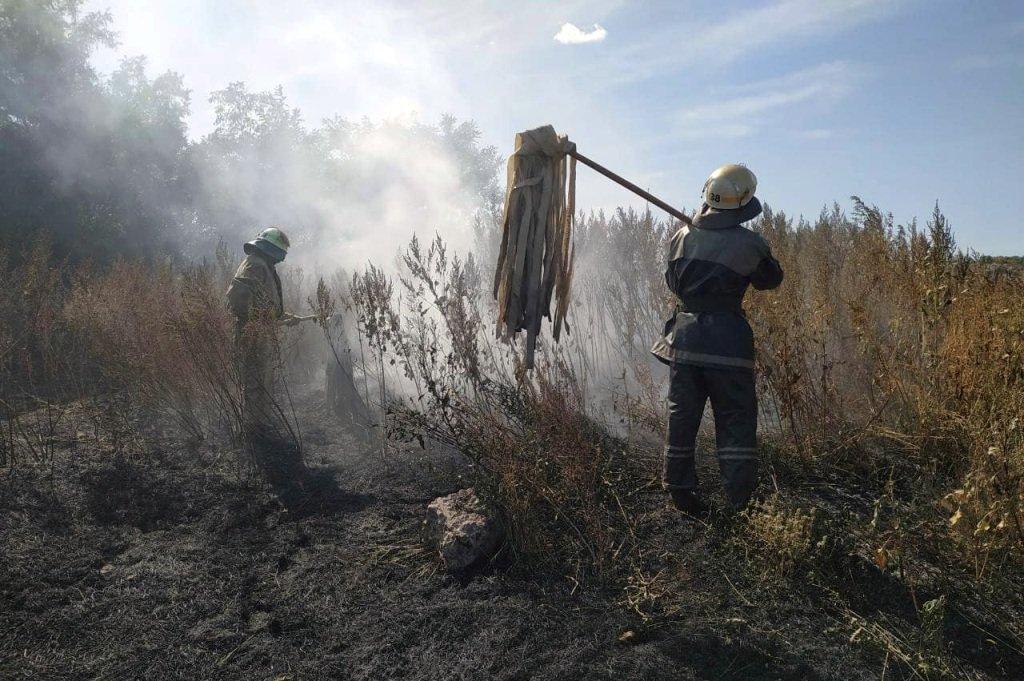 Под Каменским горел лес: выгорело 12 гектаров экосистемы, фото-14