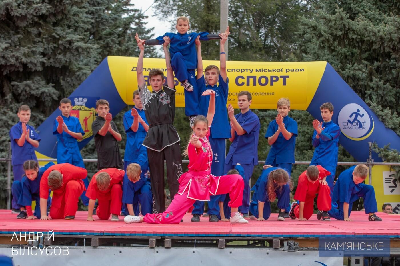В Каменском состоялся фестиваль восточных единоборств, фото-4