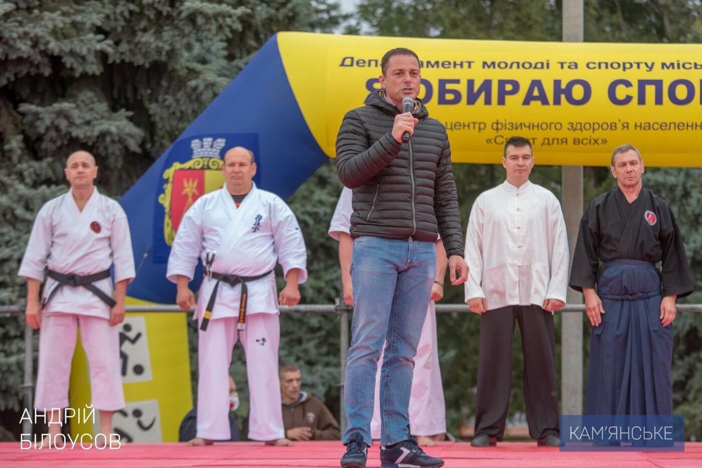 В Каменском состоялся фестиваль восточных единоборств, фото-1