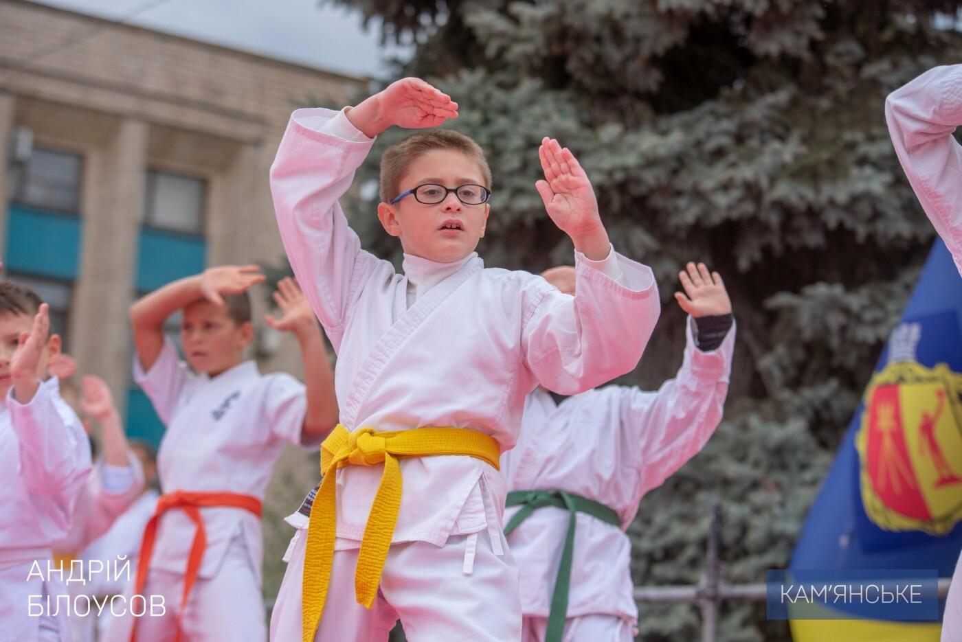 В Каменском состоялся фестиваль восточных единоборств, фото-7